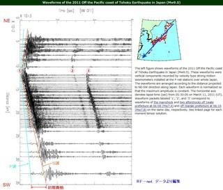 3.11地震波.jpg